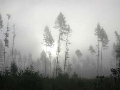 köd a Tátrában