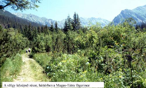 Kapor-völgy